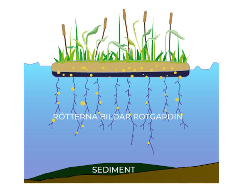 Veg Techs flytande våtmark