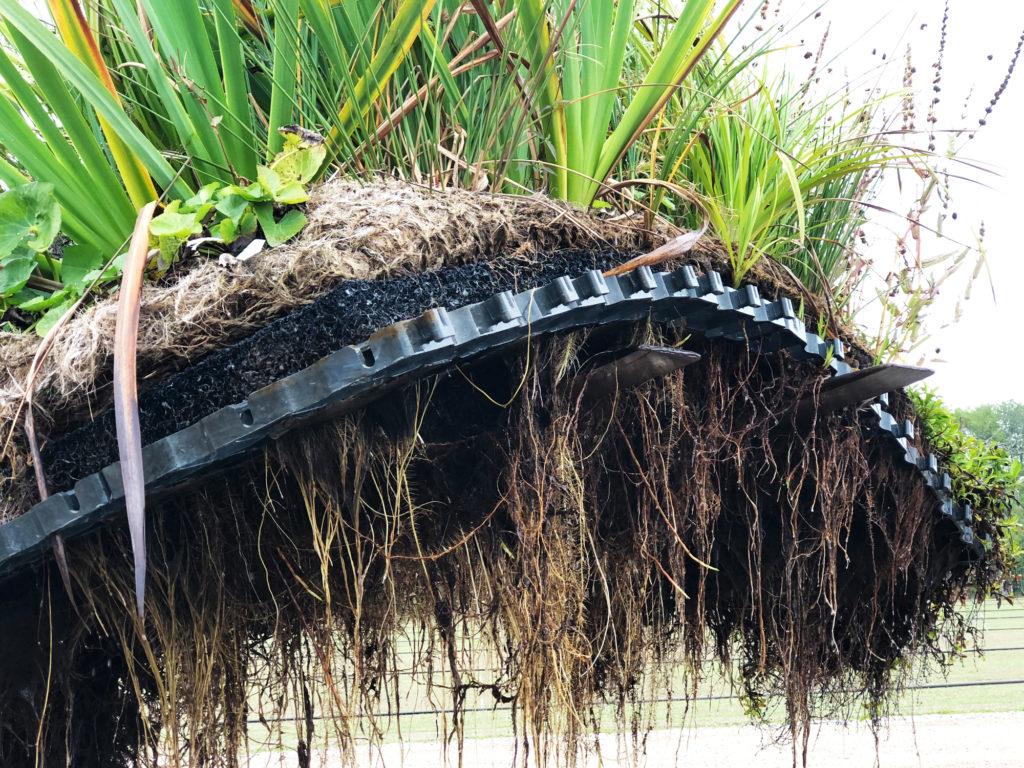 Flytande våtmark rotgardin