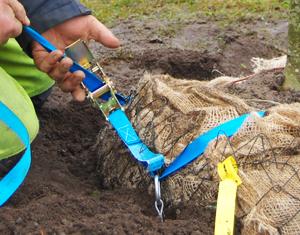 Duckbill trädförankring för bjälklag
