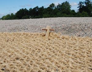 Kokosnät erosionsskyddar slänter