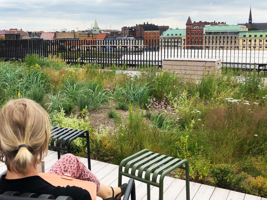 Takträdgård ger fina vyer över staden