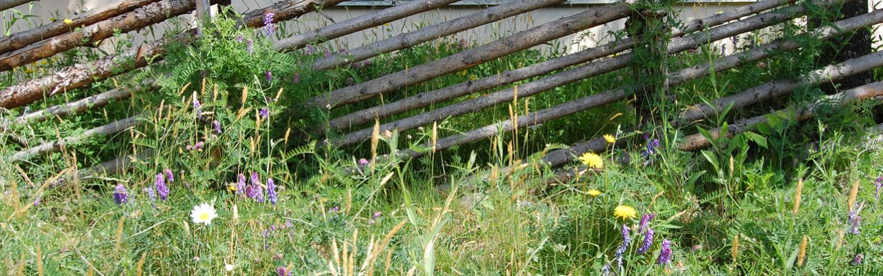 Vegetationsteknik på småländska